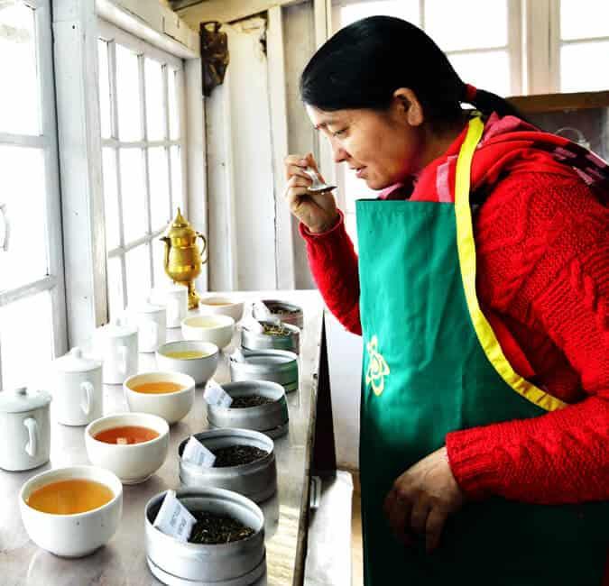 Tea Experience - Allita
